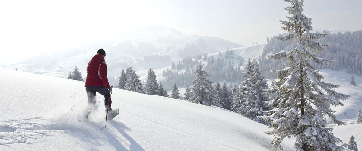 Schneeschuhwandern im Fichtelgebirge | Gasthof Pension Waldfrieden