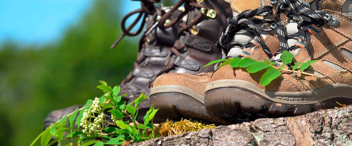 Wandern im Fichtelgebirge | Gasthof Pension Waldfrieden