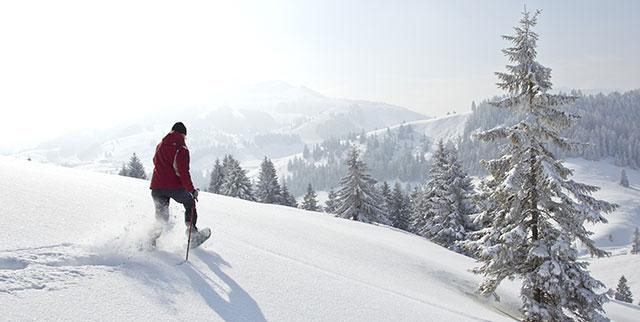 Schneeschuhwandern | Gasthof Pension Waldfrieden