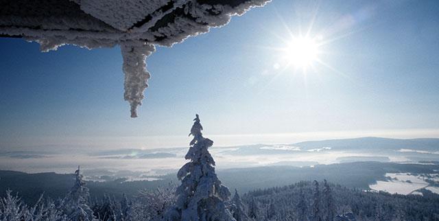 Winterurlaub | Gasthof Pension Waldfrieden